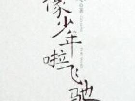 《像少年啦飞驰》的经典语录/语句