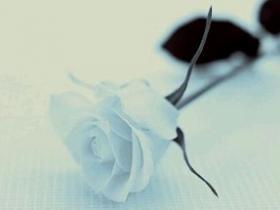 如果爱,请深爱,如果不爱,那么请你离开