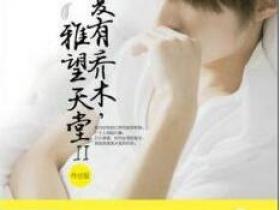 《夏有乔木,雅望天堂2》的经典语录/佳句