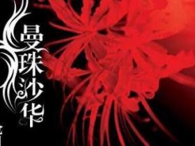 《曼珠沙华》的经典语录/语句/名言