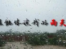 我的雨天再也不会有人了解了