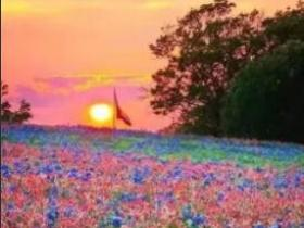 生活没有十全十美简单就好;人生没有十全十美快乐就好!
