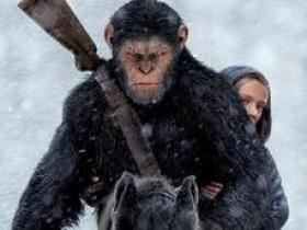 《猩球崛起3:终极之战》的经典台词/语录/对白