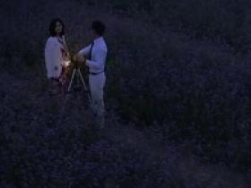 《恋爱先生(第31-32集)》的经典台词/语录/对白