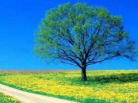 给自己一个微笑,人生处处是阳光