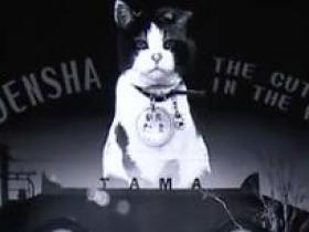 小玉毕竟是一只摩登女神猫,她更爱火车(英国《经济学人》杂志写给读者 2015年7月2日)见字如面