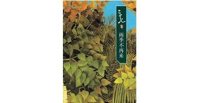 《雨季不再来》的经典语录/语句