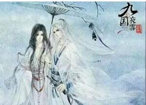 《九国夜雪》的经典语录/语句