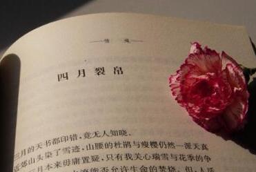 《四月裂帛》的经典语录/语句/名言