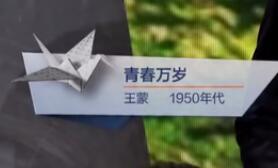 青春万岁(王蒙 1950年代)见字如面